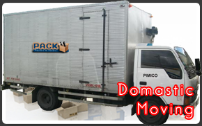 domastic-moving